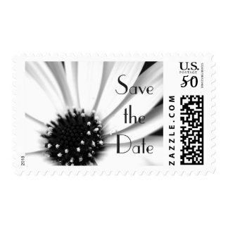 Black and White Daisy, Customisable Wedding Stamp