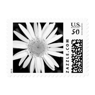 Black And White Daisy Flower Customizable Postage