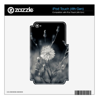 Black and White Dandelion Photography Decal For iPod Touch 4G