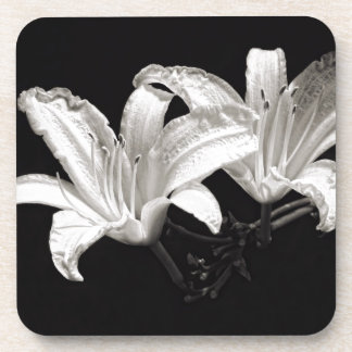 Black and White Daylily Coaster