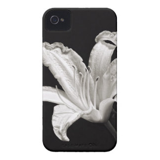 Black and White Daylily iPhone 4 Case-Mate Case