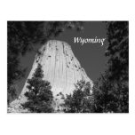 Black and White Devils Tower Postcards
