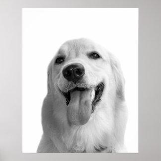 Black and white dog pet animal photo nursery kids poster