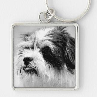 Black and White Dog Photography 3 Keychain