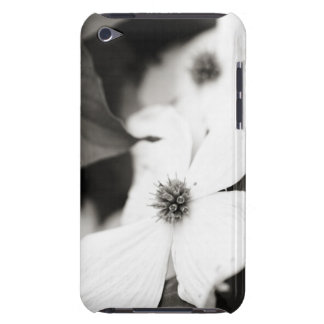 Black and White Dogwood Flower iPod Touch Case