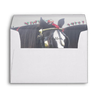 Black and white dray horse in colorful tack photo envelope