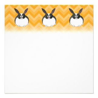 Black and White Dutch Rabbit. Personalized Announcements
