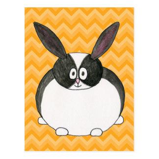Black and White Dutch Rabbit. Post Card