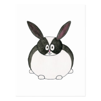 Black and White Dutch Rabbit. Post Cards