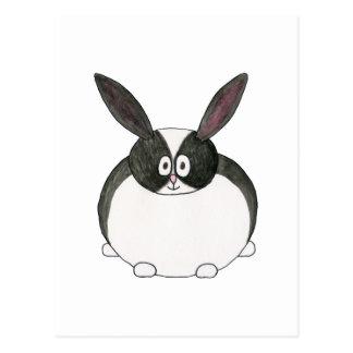 Black and White Dutch Rabbit. Postcard