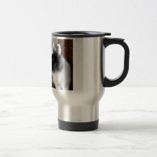 Black and white dwarf rabbit mugs
