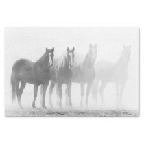 Black And White Fade Out Horses Tissue Paper