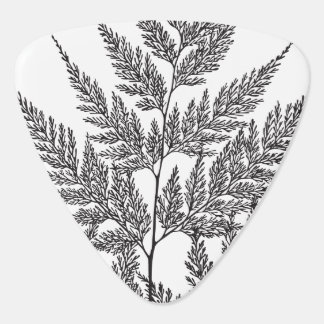 Black and White Fern Frond Guitar Pick