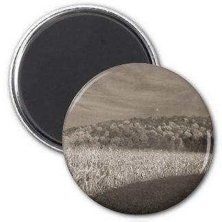 Black and White Fields Of Grain Magnet