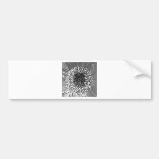 Black And White Floral Photography Bumper Sticker