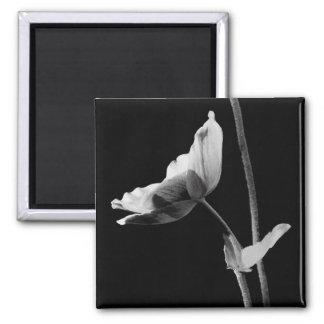 Black and White Flower Magnet