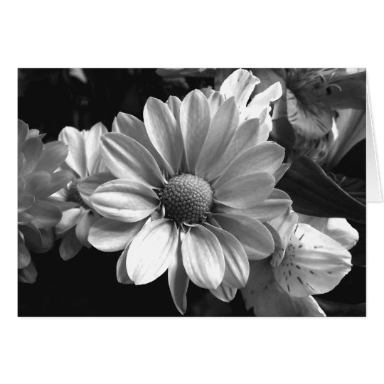 Black and White Flower Photo Card