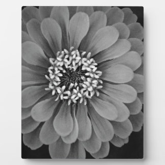 Black and White Flower Photo Plaque