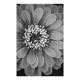 Black and White Flower Photo Stationery