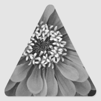 Black and White Flower Photo Triangle Sticker