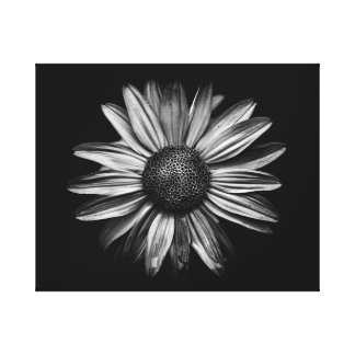 Black And White Flowers 18 Canvas Print