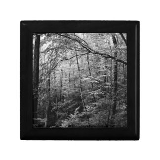 Black and White Forest Gift Box