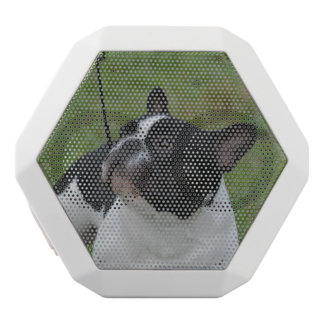 Black and White French Bulldog White Boombot Rex Bluetooth Speaker