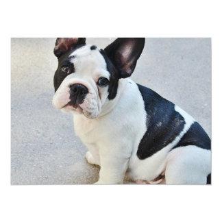 Black and White French Bulldog 5.5x7.5 Paper Invitation Card