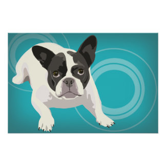 Black and White French Bulldog on Blue Background Poster