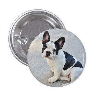 Black and White French Bulldog Pinback Button