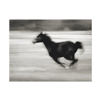 Black and White Galloping Horse Canvas Print