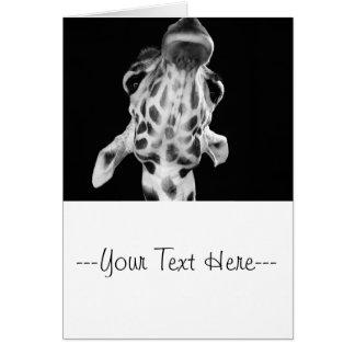 Black and White Giraf Portrait Animal Photo Cards