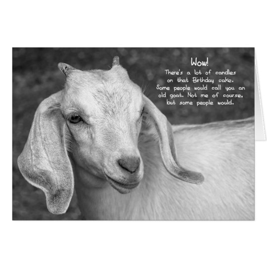 Black and white goat birthday card zazzle black and white goat birthday card bookmarktalkfo Image collections