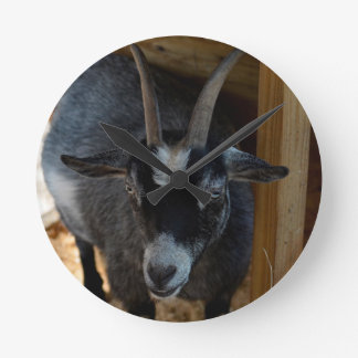 black and white goat under wood structure animal round clock