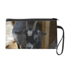 black and white goat under wood structure animal wristlet