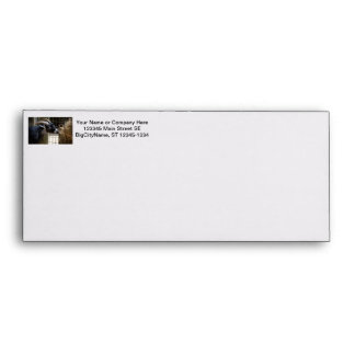 black and white goat with horns eating hay animal envelope