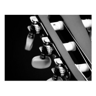 Black and White Guitar Head Postcard
