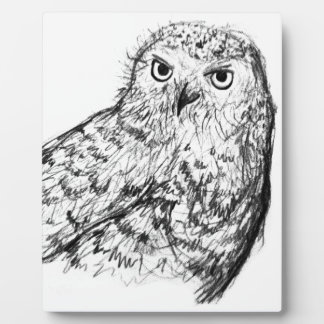 Black and white hand drawn owl plaque