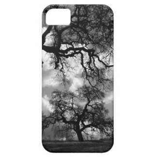 Black and White Haunted Trees iPhone SE/5/5s Case