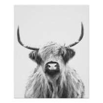 Black and White Highland Cow Poster