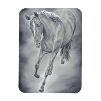 Black and White Horse Magnet
