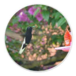 Black and White hummingbird flying at a feeder Ceramic Knob