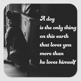 Black and White Inspirational Dog Photo Square Sticker