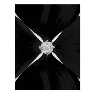 Black and white inverted dogwood flower postcard