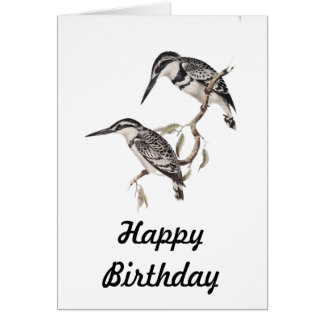 Black and White Kingfisher Card