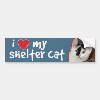 Black and White Kitten Bumper Stickers/Decals Bumper Sticker