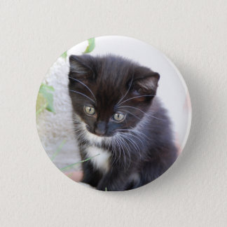 Black and White Kitten Button