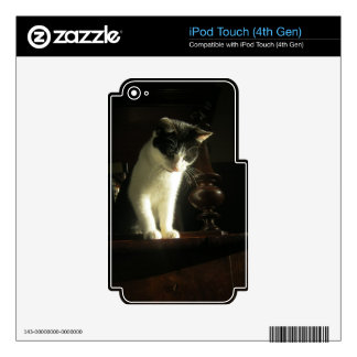 Black and White Kitten Cat iPod Touch 4G Skins