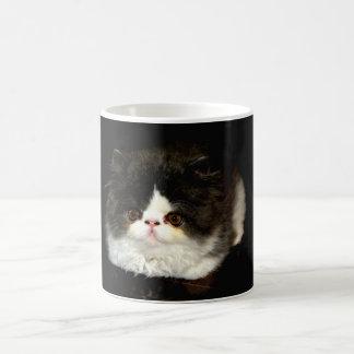 Black and White Kitten Coffee Mug