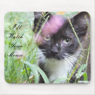 Black And White Kitten Mouse Pad